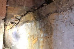 Moisture and wood destroying organism damage in a crawl space