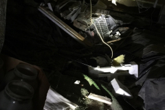 A crawl space with 40 plus years of accumulated stored items...